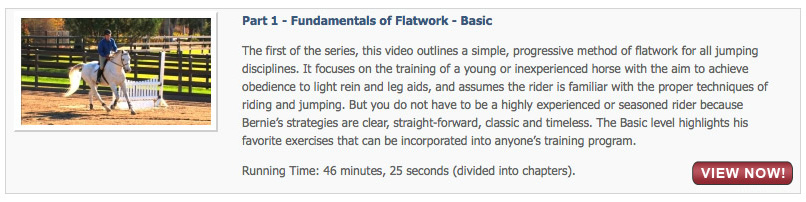 Fundamentals of Flatwork - Basic