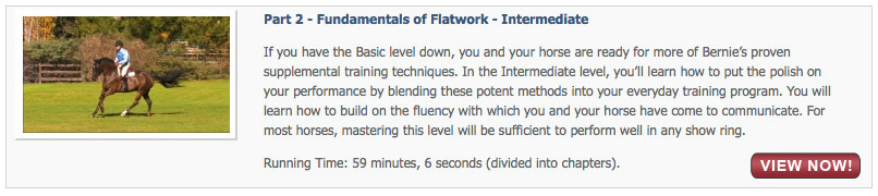 Fundamentals of Flatwork - Intermediate