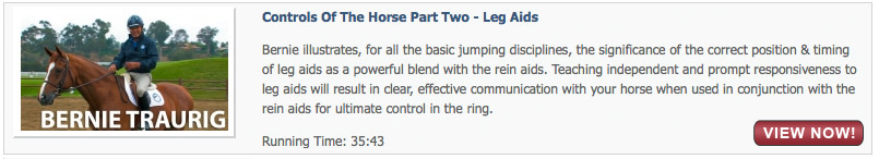 Controls of the Horse Part Two - Leg Aids