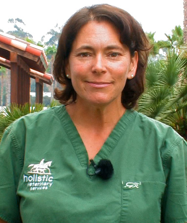 Dr. Heather Mack - Equine Dentistry