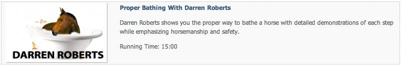 Darren Roberts - Bathing a horse