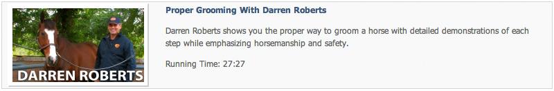 Darren Roberts - Grooming a Horse