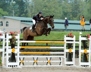 Equestrian Coach Testimonial