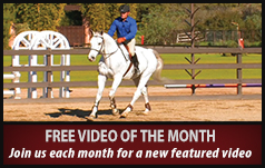 Free Video of the Month