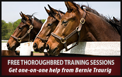 Free Thoroughbred Training with Bernie Traurig