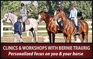 Clinics and workshops with Bernie