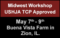 Midwest Riding Workshop-TCP Approved Clinic