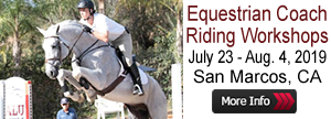 Equestrian Coach Riding Workshop